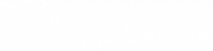 Social Wings